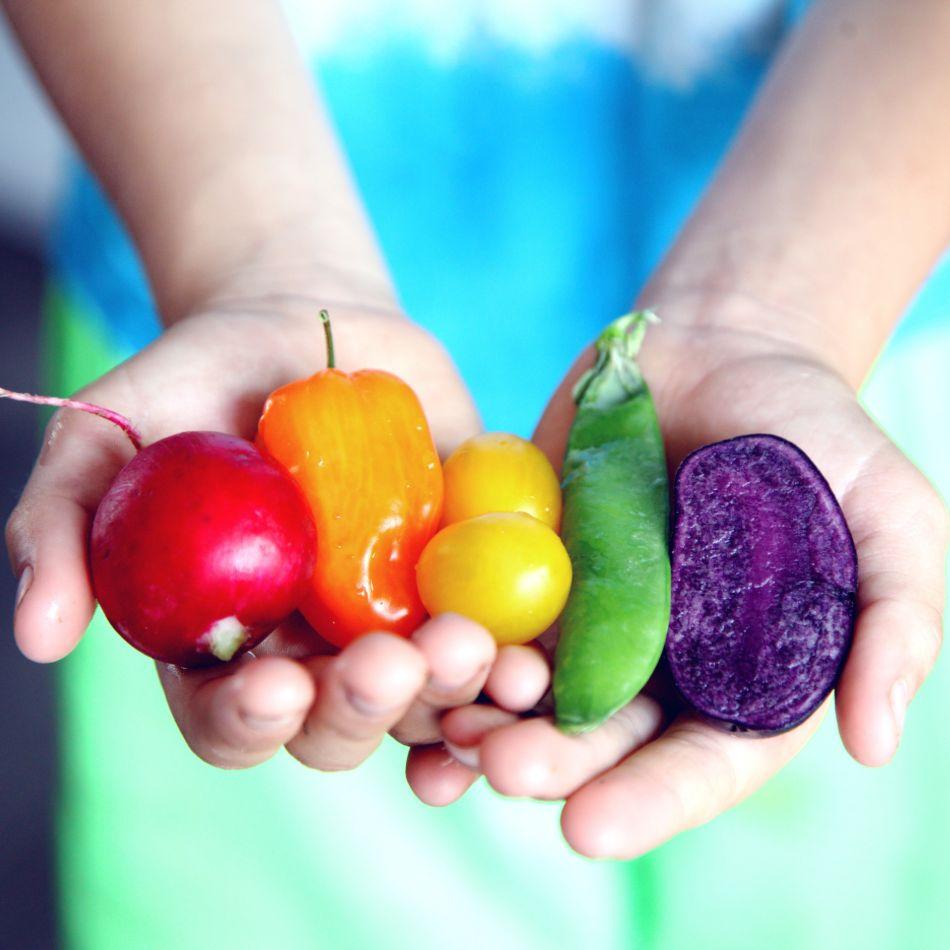 nutrivat, djeca, voće, povrće