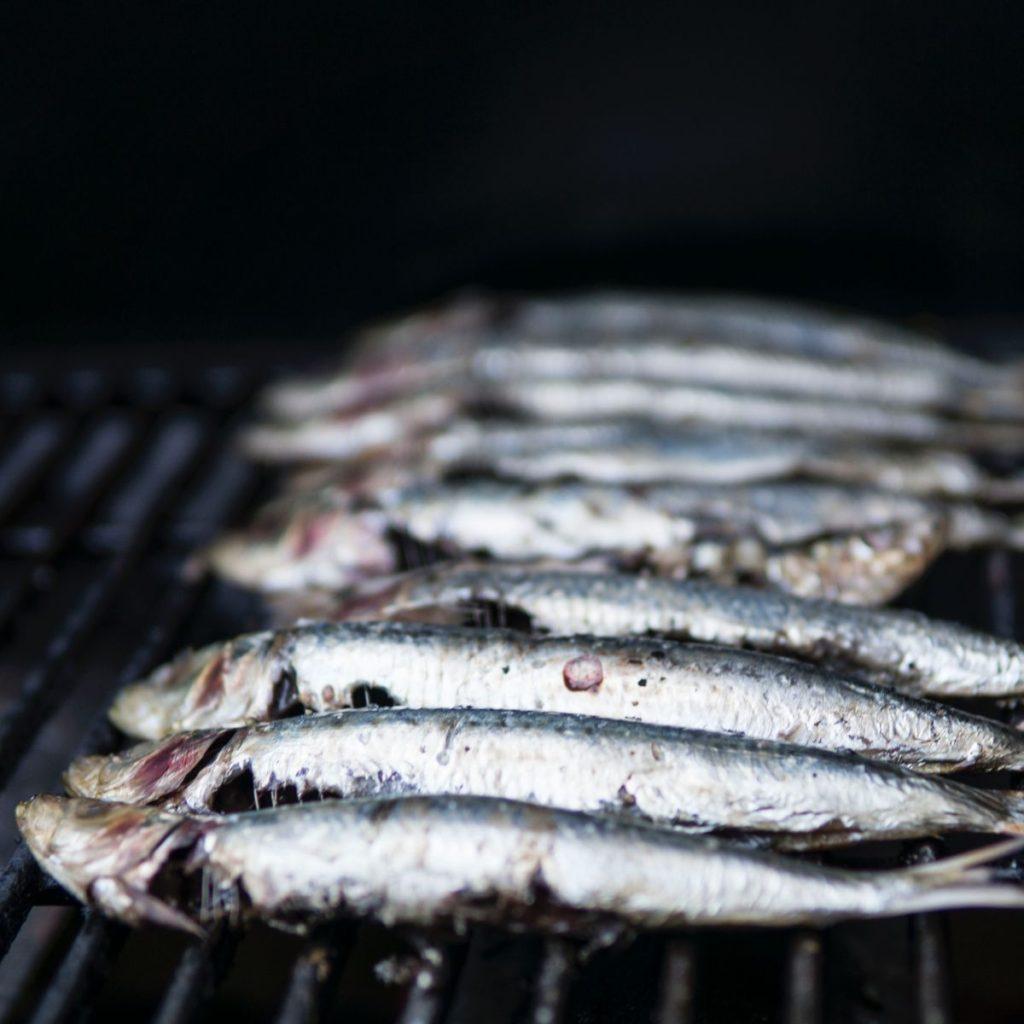 nutrivat, pms, pms prehrana, riba