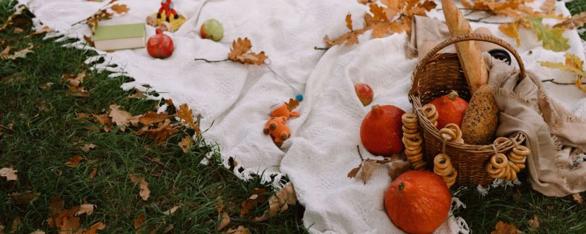 jesen, recept, nutrivat